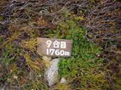 P11204031