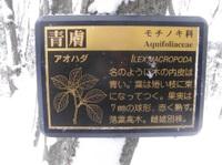P1300052