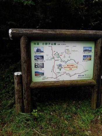 Kimg3144